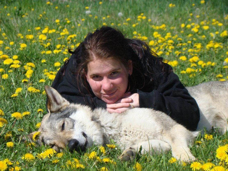 http://dl.wolfdog.org/g/16/160293.jpg